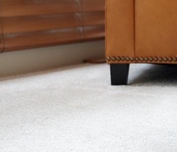 Carpet Cleaning Nashville 1 Rated Nashville Carpet