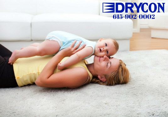 nashville carpet cleaners - chem dry cleaners